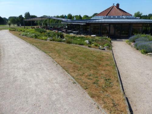 Golfplatz Grossensee vor der Neubepflanzung im Sommer 2018