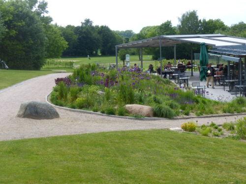 Golfplatz Grossensee nach der Neubepflanzung im Mai 2020