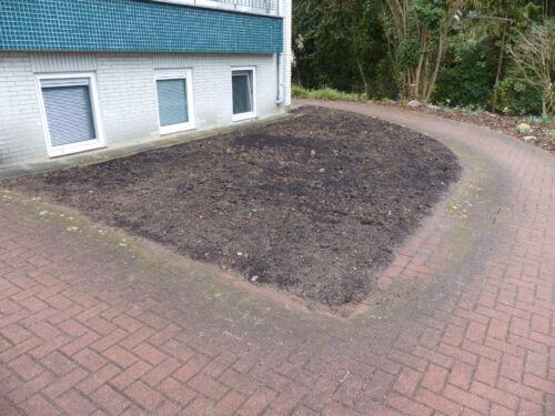 Aus Rasen wird Beet: die vorbereitete Pflanzfläche im Frühling 2019