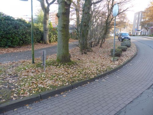 Flächen Alter Haidberg in Norderstedt im November 2016