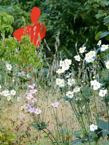 Privatgarten in Hamburg mit Rotem Mann und Anemone japonica Honorine Jobert