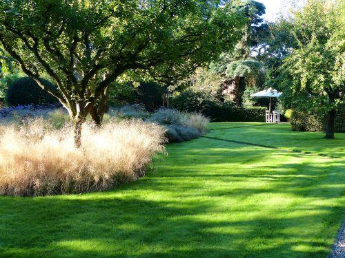Rasen kann sensationell aussehen, wenn er gemäht wird und auf hohe Gräser stößt