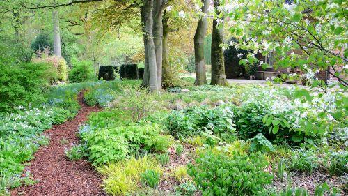 Schattige Pflanzung in einem Privatgarten in Hamburg Volksdorf
