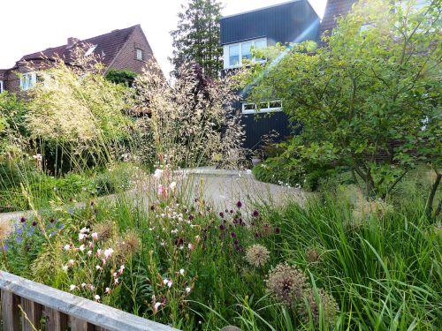 Vorgarten eines Hauses in Hamburg- Volksdorf 2012 - 2015