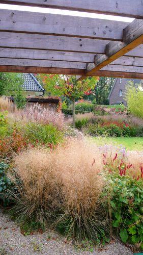 Gräserdominierte Pflanzung in einem Garten in Großhansdorf