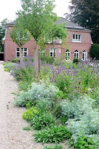 Befahrbarer Kiesweg und Kiespflanzung im Juli