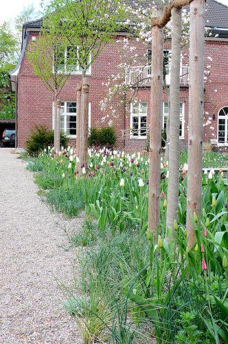 Befahrbarer Kiesweg und Kiespflanzung im April