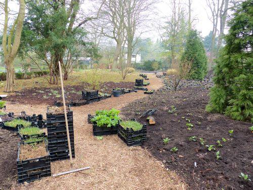 Die Entwicklung eines Hamburger Schattengartens April 2014