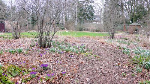 Ein schattiger Weg in einem Hamburger Privatgarten Februar