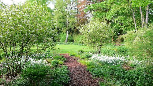 Ein schattiger Weg in einem Hamburger Privatgarten Mai