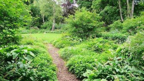 Ein schattiger Weg in einem Hamburger Privatgarten Juli
