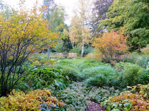 Ein schattiger Weg in einem Hamburger Privatgarten Oktober