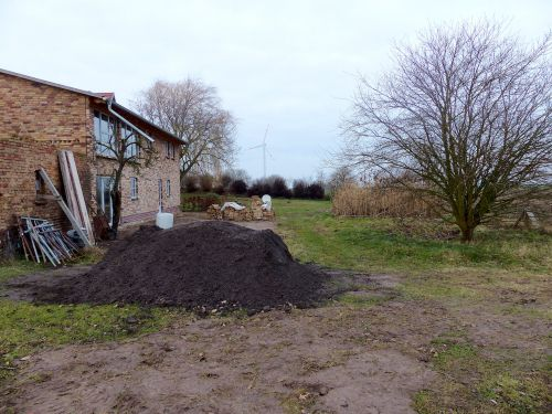 Entwicklung einer Staudenpflanzung in Mecklenburg-Vorpommern Februar 2017